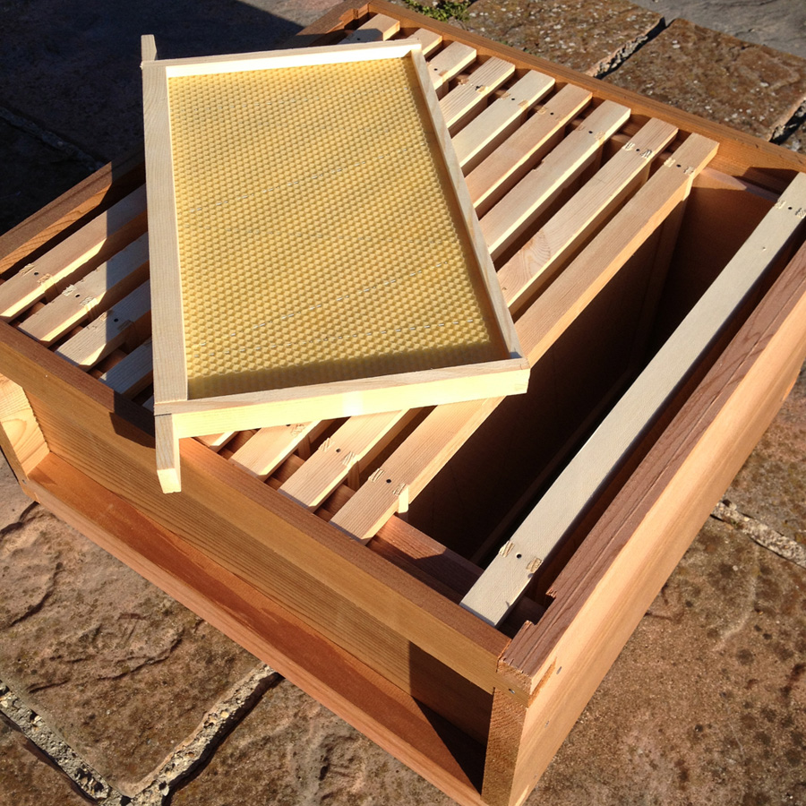 The new bee hive brood box ready to go (almost)